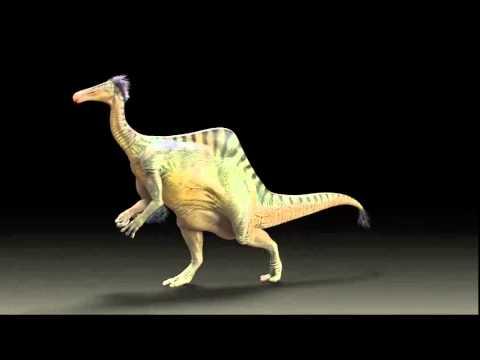 ▶ Deinocheirus walking