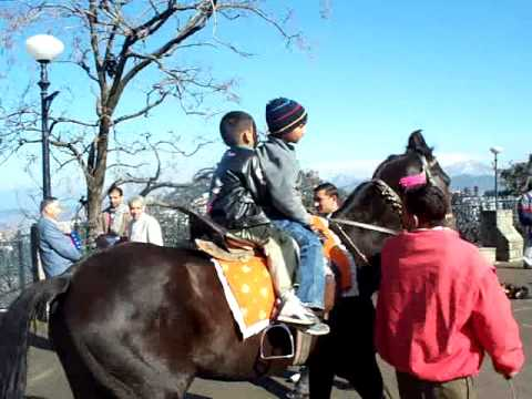 Shimla Simla HP Mall Road Horse ride.MOV