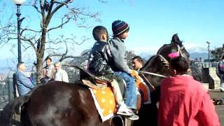 Shimla Simla HP Mall Road Horse ride.MOV