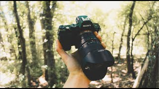 Best Video Camera Under $600   Sony A7