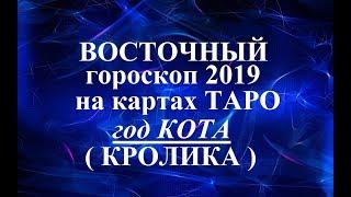 ВОСТОЧНЫЙ гороскоп 2019. Год КОТА (КРОЛИКА). Таро прогноз.