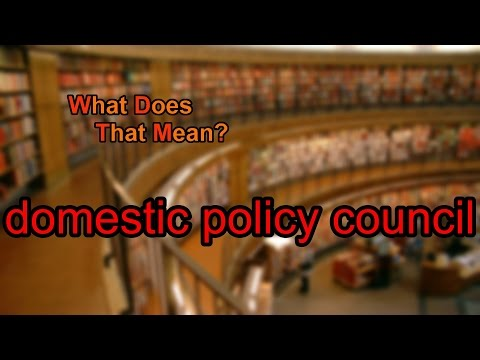 What does domestic policy council mean?