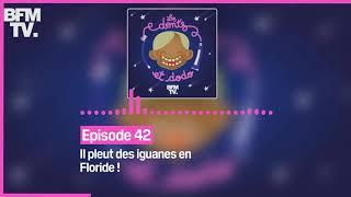 Episode 42 : Il pleut des iguanes en Floride ! - Les dents et dodo