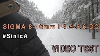 Сигма 8-16мм Ф4.5-5.6 випробування DC | відео, Синиця