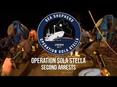Operation Sola Stella: Second Arrests