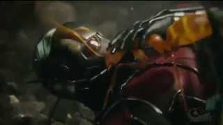 Ant-man - Awake and Alive