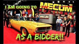 Going to My First Televised Auction: As a BIDDER!
