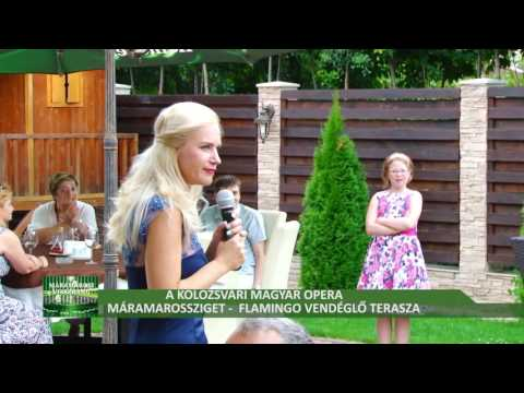 A Kolozsvári Magyar Opera előadása Máramarosszigeten- első rész