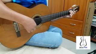 Tình Như Lá Bay Xa Guitar Solo - Jimmy Nguyen