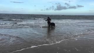 MrB on the Beach