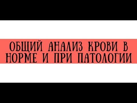 Общий анализ крови в норме и при патологии - meduniver.com