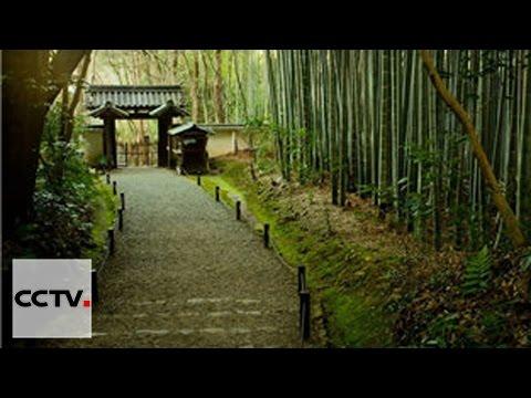 Le Jardin chinois Episode 3 Partie 2