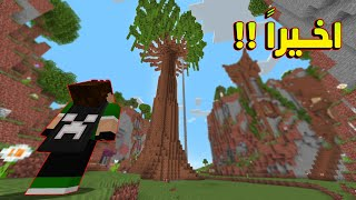 دايموند كرافت #20 كملت الشجرة + مصنع الصوف !!