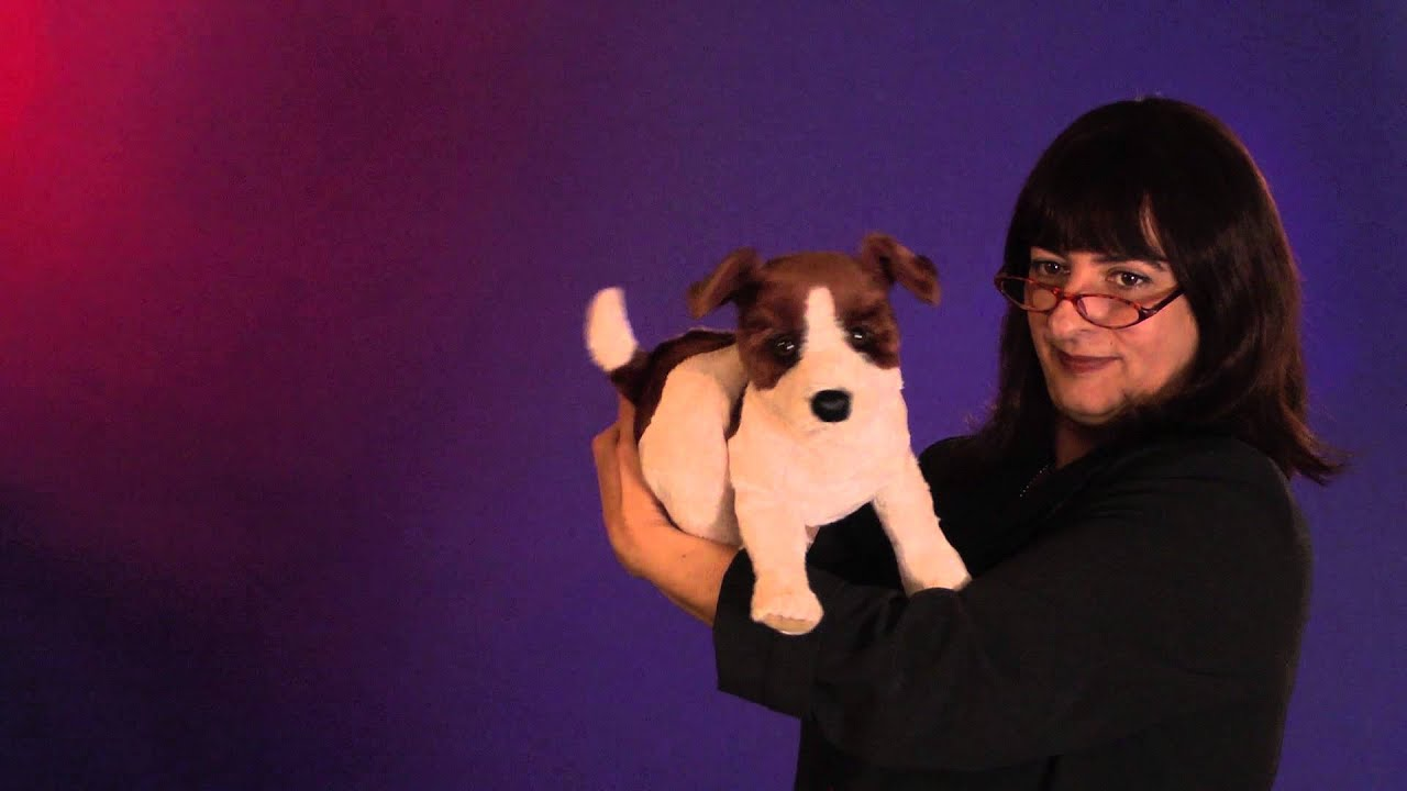 Folkmanis® Jack Russell Terrier Puppet Demo