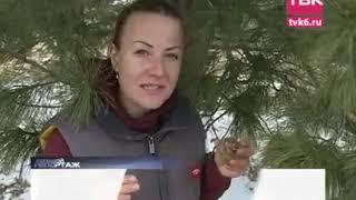 «Большой репортаж ТВК»: золотая лихорадка в Красноярском крае
