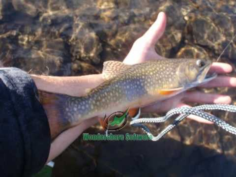 History of fly fishing part i youtube for History of fly fishing