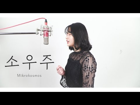 BTS - Mikrokosmos (소우주) COVER