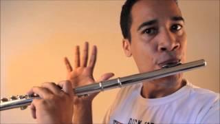 As Sete Notas na Flauta transversal, dó, ré, mi...