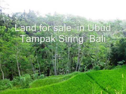 Property for sale in Bali, land for sale in Ubud Bali - TJUB224