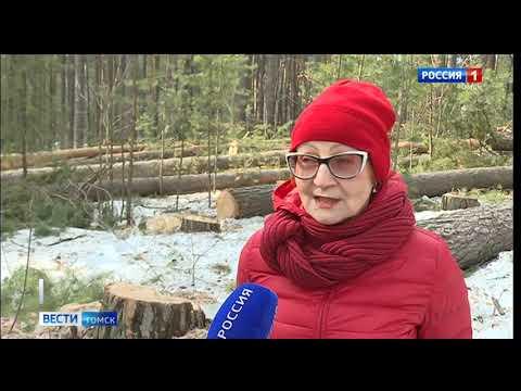 Вести-Томск, выпуск 14:20 от 06.04.2020