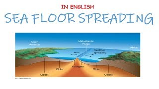 Seafloor Spreading Theory by Harry H Hess & Contraction Theory Explained (In English)