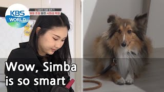 Wow, Simba is so smart (Dogs are incredible) | KBS WORLD TV 210324