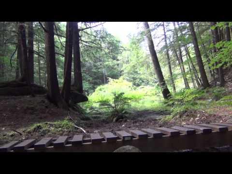 Trail Ride Review: Boston Lot Trails - YCN News 8.3.15