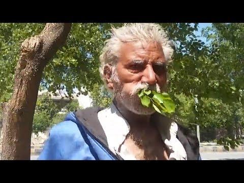Dieser Mann isst seit 25 Jahren NUR BÄUME! Du staunst wie es ihm dabei geht!