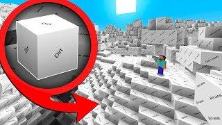 I beat Minecraft with no textures (HARD)