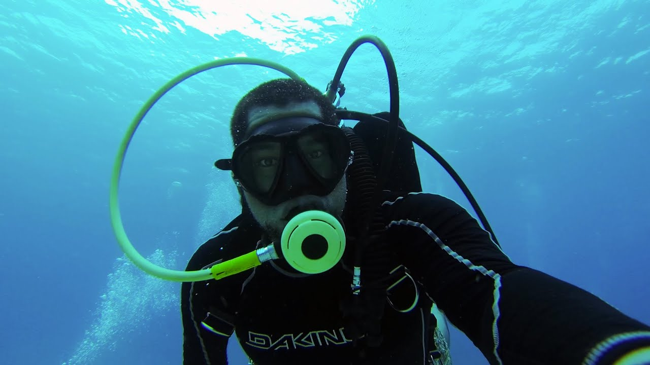 What does the ichthyologist do Profession ichthyologist is
