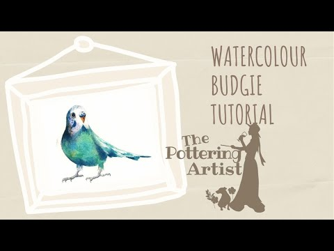 Watercolor BUDGIE Tutorial - step by step for beginners