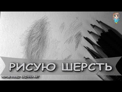Как рисовать шерсть животных карандашом
