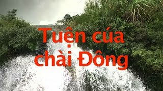 The Story of Dong (Tuện cúa chài Đông) - Nung Highland of Vietnam