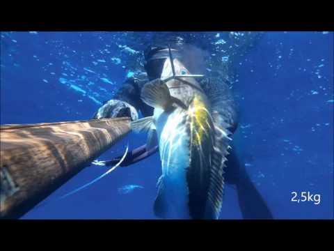 Enter Summer-Speafishing 2017-Team Sigalsub Greece Deep Carbon