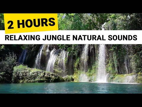 2 Hours Relaxing Waterfall & Jungle Sounds 🎧 Tropical Rainforest Nature. Calming Sound Of Water