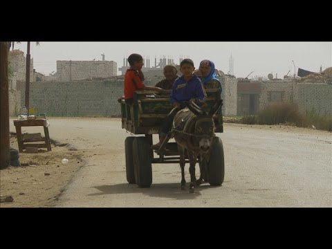 Egypt: Building Resilience