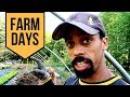 OUT WITH THE OLD!!! // HOW TO QUICKLY TURN YOUR MARKET GARDEN BEDS OVER!// FARM DAYS @ BIG POND FARM