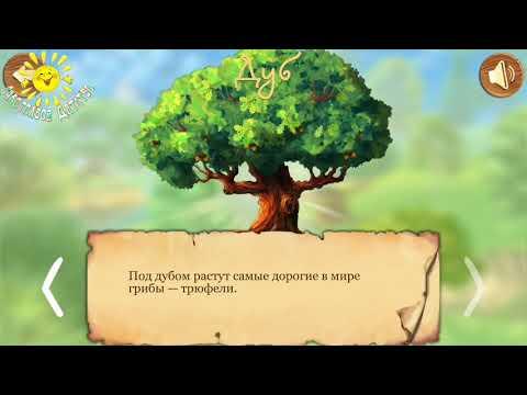 Деревья  Что Растет В Лесу  Познавательный Мультик Для Детей 1