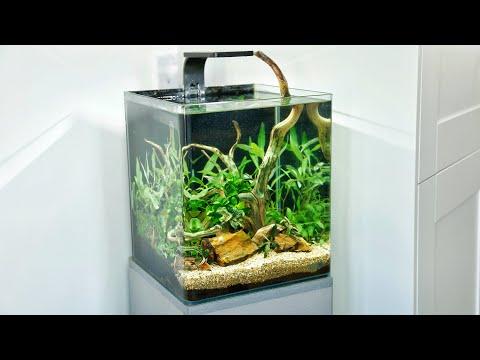 Aquascape Tutorial - How to makeover a Shrimp Nano Aquarium