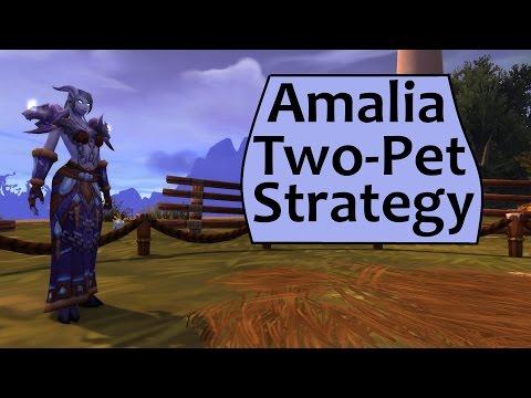 Amalia - 2 Pet Strategy for Fight Night: Amalia