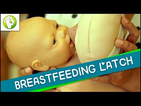 Breast Feeding Latch