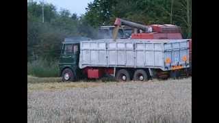 September 2012, harvesting '70's style. Boston, Lincolnshire.