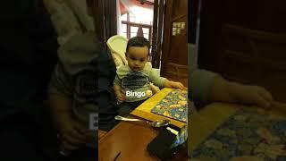 Arif Jiwa & lagu BINGO | Cucu DS Siti Nurhaliza