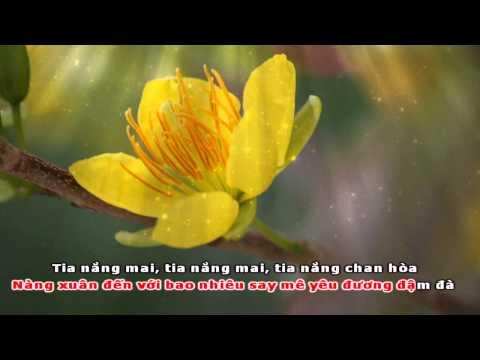 [HD] Karaoke Cánh bướm mùa xuân