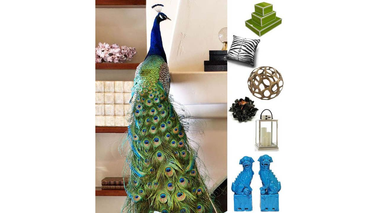 Marvelous Best Peacock Lamps For Home Decor Ideas   YouTube