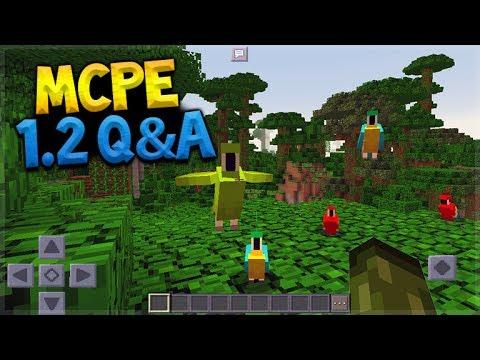 Minecraft Pocket Edition – 1.2 Q&A New Dimensions + Parrots (Pocket Edition)