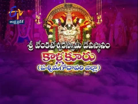Teerthayatra - Sri Venkateswara Swamy Temple Kallakuru (W.G).- 30th April 2016 - తీర్థయాత్ర –