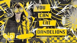 Eating Dandelions | The Salt | NPR