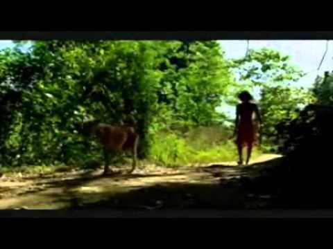 Vedda People of Sri Lanka (Tribal Veddas)