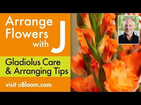 How to Create Fun Arrangements with Gladiolus from the Farmer Market!